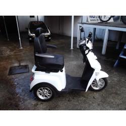 Triciclo elétrico Goose R3N